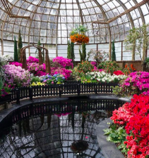 Instagram photo of the Lincoln Park Conservatory